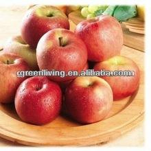 new crop red fuji apple ,China(apple:fuji, huaniu, gala, golden,qingguan, red star)