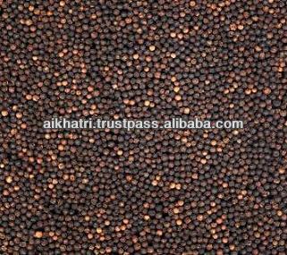 Seasoning Black Pepper Powder (Piper nigrum)