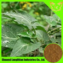 New Product On Chinese Market Ranunculus Ternatus Thunb. Extract