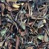 chinese Health Sliming White Tea(SHOUMEI)