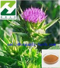 100% Natural Silymarin Milk Thistle Extract
