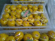 2013 baby mandarin 4-5.5cm,high quality