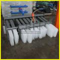 comercial e industrial de grande bloco de gelo de plantas