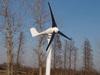 100W twin tails wind turbines generators