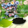 De alta qualidade Blueberry Pterostilbene ( selvagem extrato de mirtilo )
