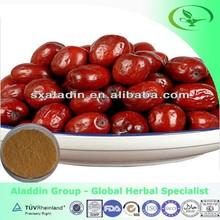 100% Natural Jujuboside / Wild Jujube extract powder GMP certified