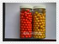Paintball preço de atacado da china, 0.68 paintball de calibre para o transporte livre