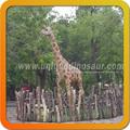 la simulación de alta modelo animal modelo jirafa para la exportación