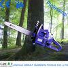 professional and good quality 25cc/38cc/45cc/52cc/58cc/62cc/65cc chainsaws blue max chainsaw
