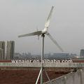 48v 1000w 50hz energía alternativa de molino de viento
