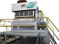 Auto ce certificated bolo/bandeja do ovo que faz a linha de produção/resíduos de reciclagem de papel equipamentos/melhores vendas de celulose máquina de moldagem