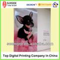 1440 dpi foto personalizada impressão