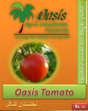 Oasis Tomato Seeds