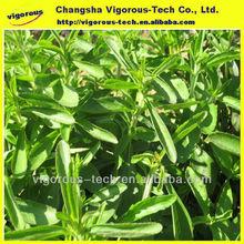 High quality stevia powder extract/stevia extract powder/organic stevia