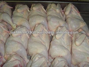 halal ukraine frozen Chicken for buyer not brokers