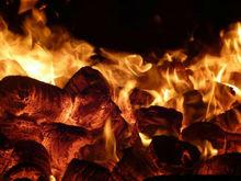 Bio Fuel Peat Briquette