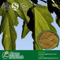 1-dnj, 1- deoxynojirmycin 1% mulberry extrato da folha do fabricante do pbf