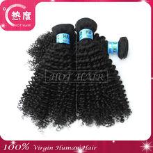 2013 cheap 100% virgin hair small wave full stock afro curly hair