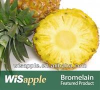 Bromelain from Pineapple Stem/ Bromelain Powder