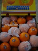 Fresh Sweet Navel Orange