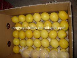 Eureka Variety Lemon