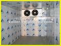 Congelador profundo cámaras frigoríficas para el pescado/carne/vegetales puerta bisagras y cerraduras