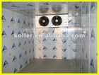 deep freezer cold room For fish/ meat/ vegetable door hinges and locks