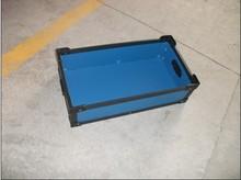 strawberry plastic container