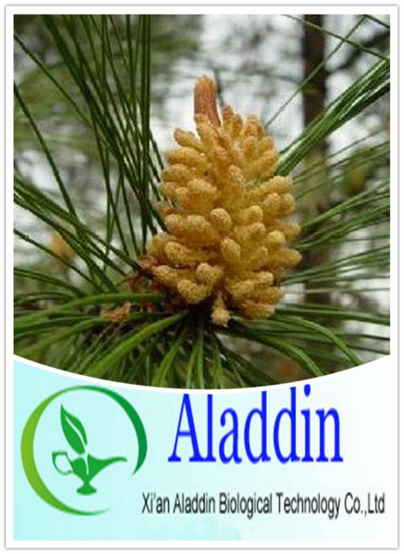 Pinus Massoniana Pollen Supply Pinus Massoniana