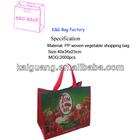 eco friendly foldable pp woven supermarket shopping handle bag