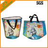 Recycle outdoor pretty cooler bags