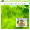 Manufacturer Supply Natural Ginkgo Biloba Extract Tablet For Healthcare Product