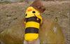 winter dog coat/stripe colour