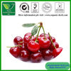 100% Natural Acerola cherry fruit Extract /West Indian cherry Extract