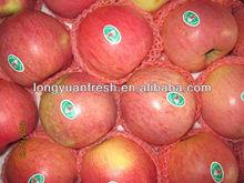 Best Price Qinguan Apple