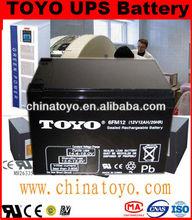 Consumer electronics battery 6V12AH rechargeable 6v battery