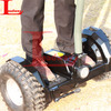 2013 the latest styles factory direct sales sand scooter(RM08D-H28)