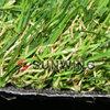 high quality fake grass for big school