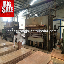 MDF door skin hot press linyi/Door Skin Production Machine/Door Forging Press