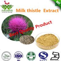 Natural Milk Thistle Extract/Silymarin 80%/ Silybin30%