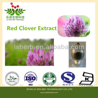 The Sources of Raw Materials Factory Red Clover Powder Isoflavones