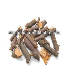 sangjisheng herb medicine CHINESE TAXILLUS TWING