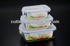 Rectangular Hermetic Glass Food Container set