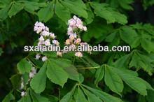 Horse Chestnut extract 20% escin for varicose vein treatment