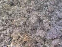 la agricultura de estiércol de vaca de estiércol