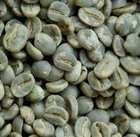 Himalayan Organic Arabica Green Coffee Beans