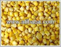 sweet corn & yellow corn