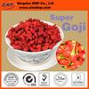 2013 GMP High Quality Goji Juice From Qingdao BNP