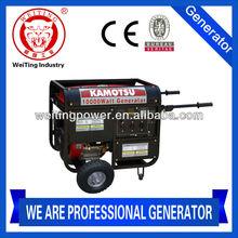 2014 portable gasoline generator 12v dc professional manufacturer(WT10000E)