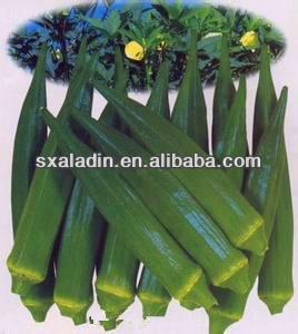 100% high quatity natural okra extract